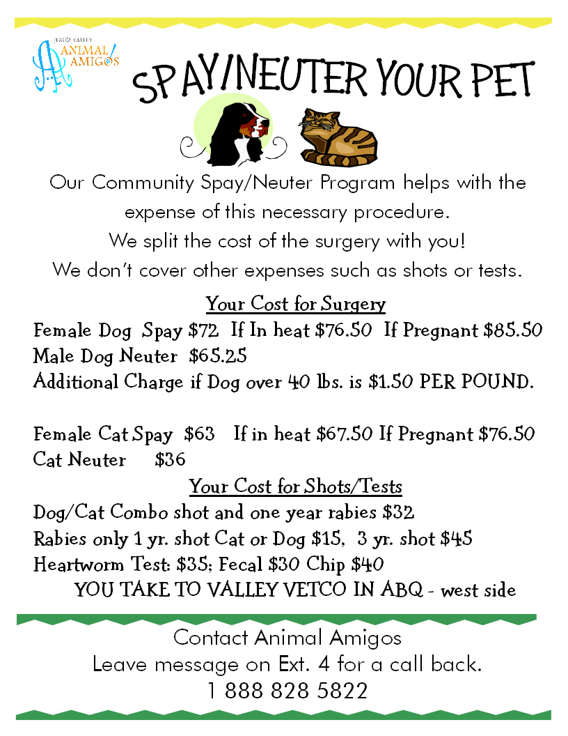 Community SN Program Poster Jan 2021 little color (1)